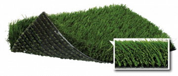 SoftLawn® Diamond Fescue | PL933